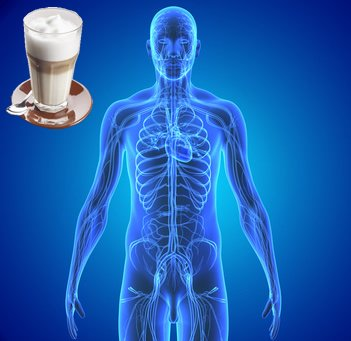Wie wirkt Kaffee