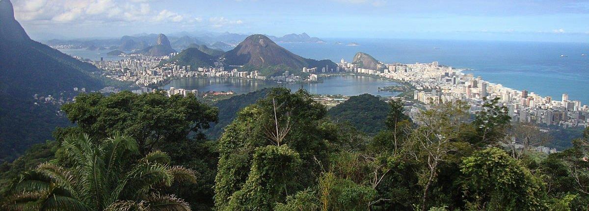 Brasiliens Kaffeebauern in der Krise – aus der Not eine Tugend schaffen