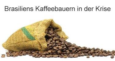 Brasiliens Kaffeebauern in der Krise