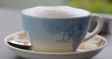 Milchkaffee auch Cafe con Leche